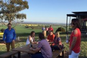 tallis-winery #4